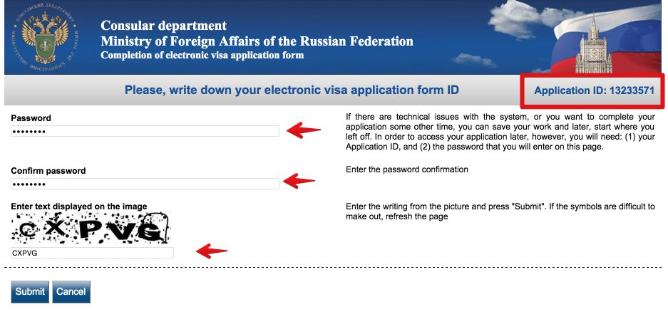 Visa application form Russia - USA Citizens 2